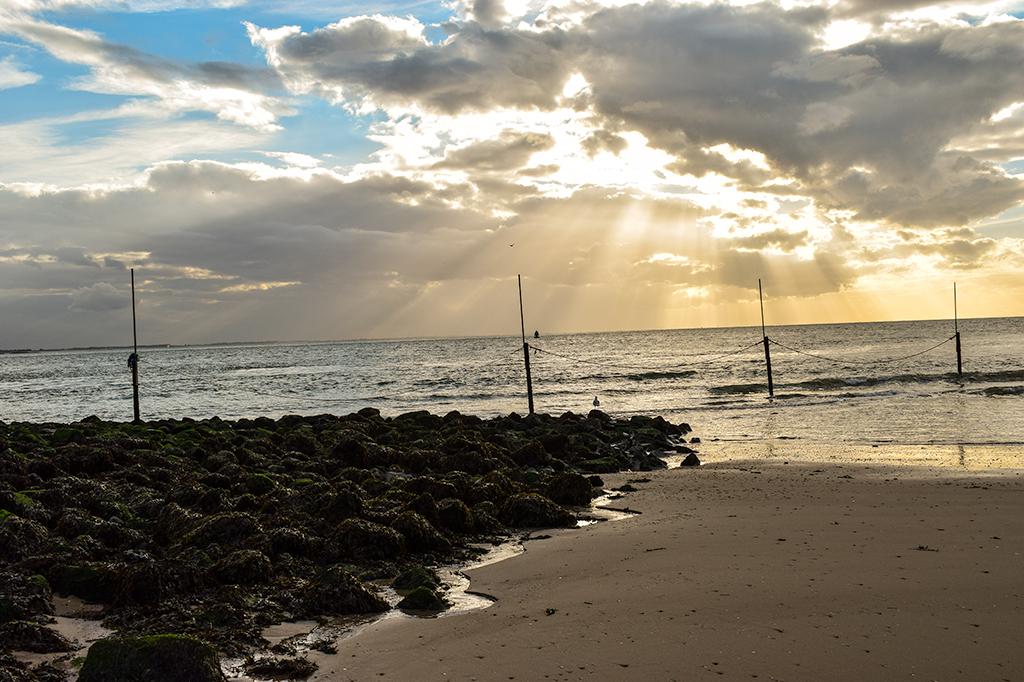 Der Strand von Vlissingen